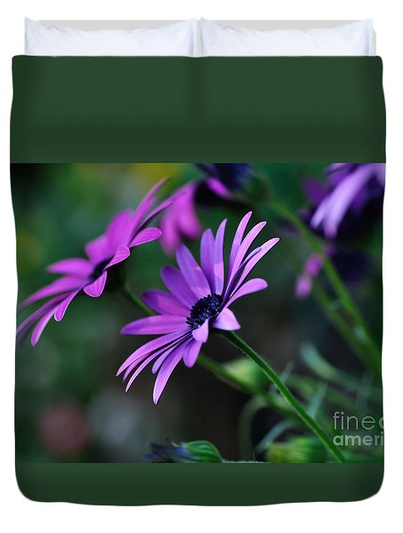Young Daisies Duvet Cover by Kaye Menner