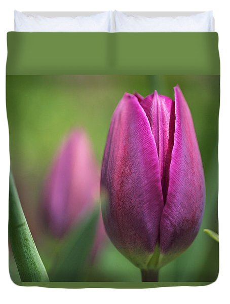 Young Purple Tulips Duvet Cover by Rona Black