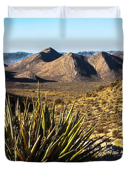 Yucca In High Deaert Duvet Cover by Robert Bales