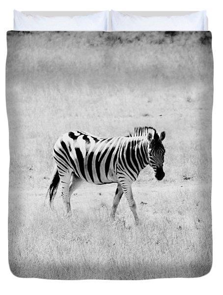 Zebra Explorer Duvet Cover by Melanie Lankford Photography