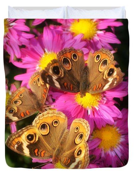 3 Beauty's Butterflies On Mum Flowers Duvet Cover by Peggy  Franz