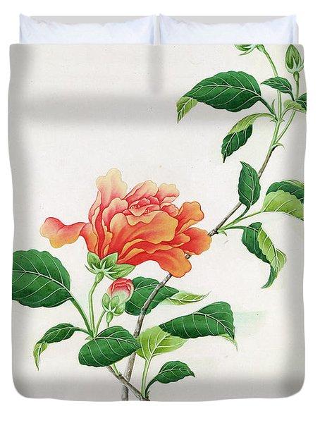 Hibiscus Duvet Cover by Georg Dionysius Ehret
