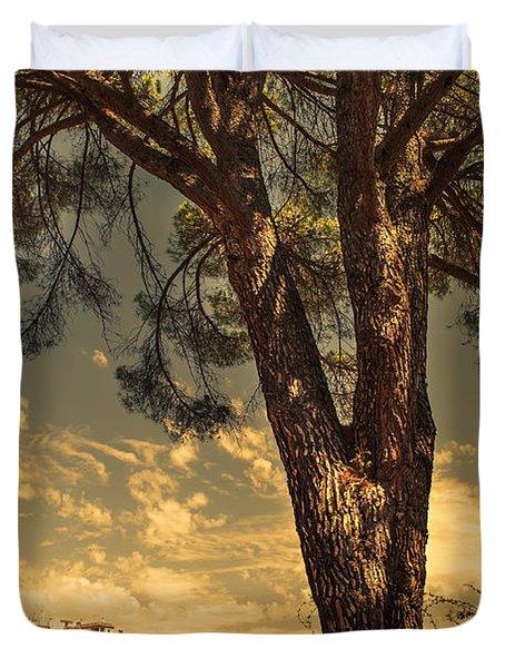 Pine Tree In The Secret Garden Duvet Cover by Jenny Rainbow