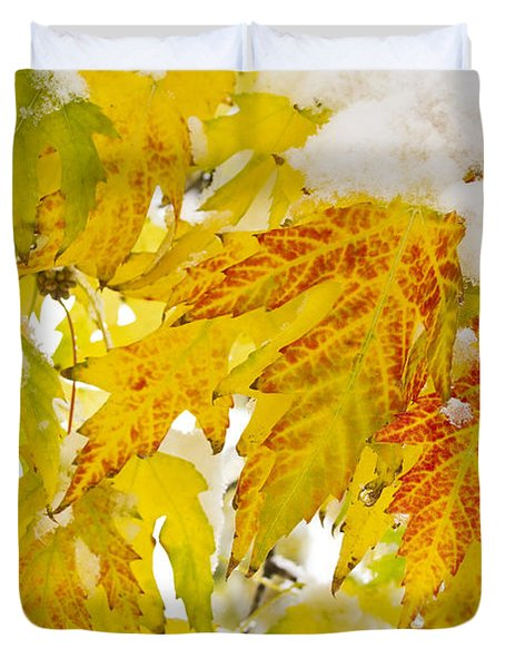 Autumn Snow  Duvet Cover by James BO  Insogna