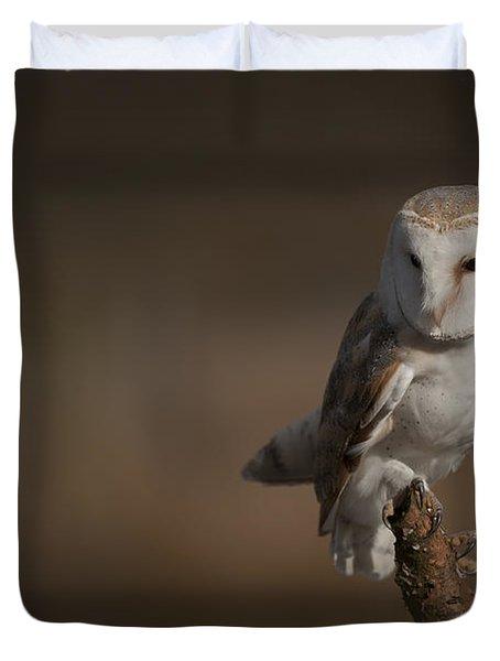 Barn Owl Duvet Cover by Andy Astbury