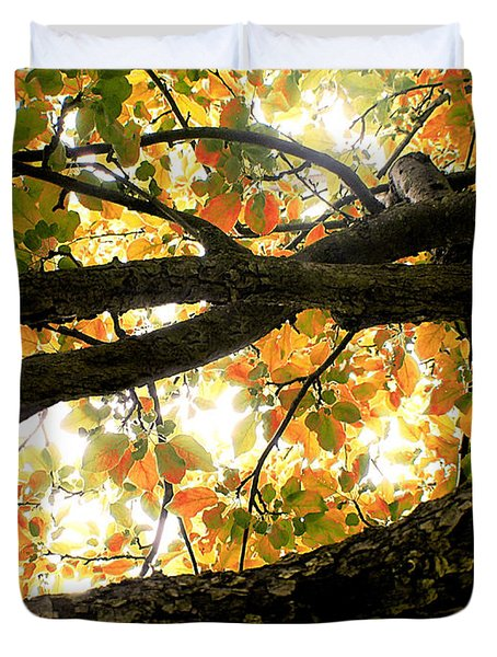 Beneath The Autumn Wolf River Apple Tree Duvet Cover by Angie Rea