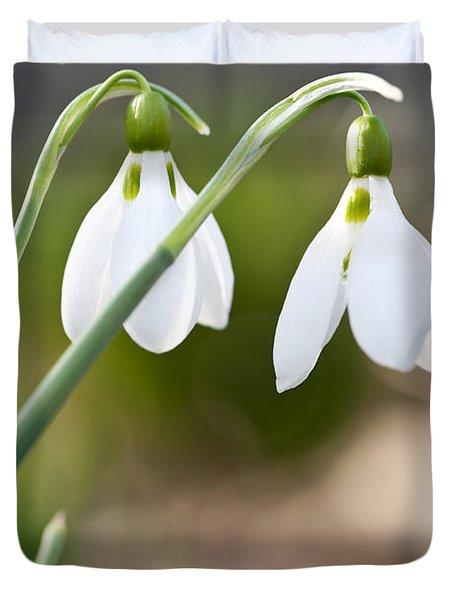 Blooming Snowdrops Duvet Cover by Elena Elisseeva