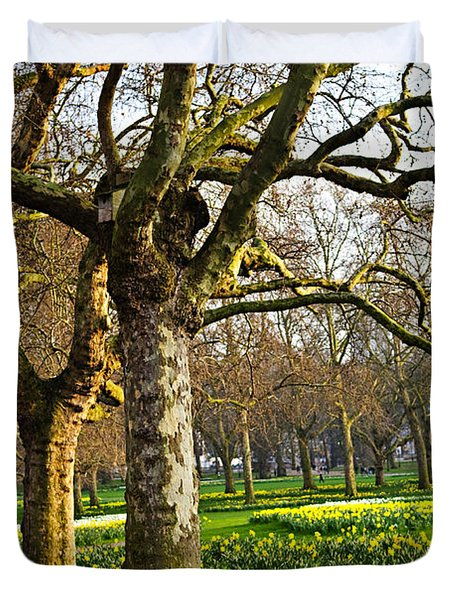 Daffodils In St. James's Park Duvet Cover by Elena Elisseeva