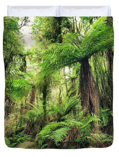 Fern Tree Duvet Cover by MotHaiBaPhoto Prints