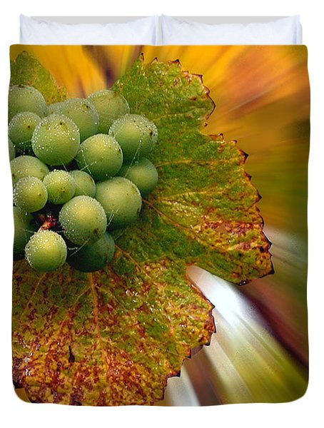 grapes Duvet Cover by Jean Noren