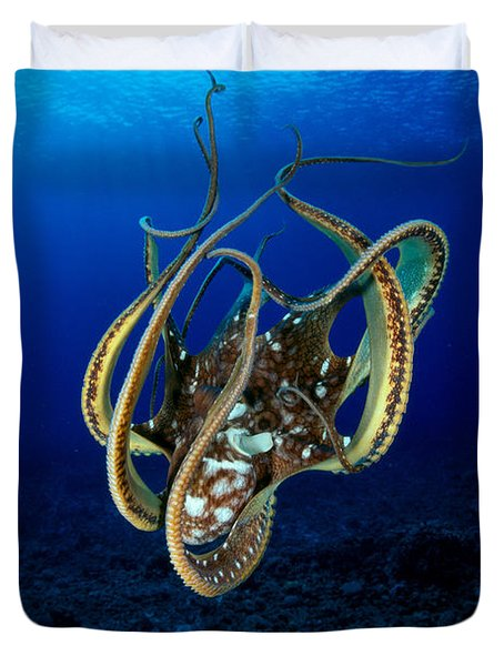 Hawaii, Day Octopus Duvet Cover by Dave Fleetham - Printscapes