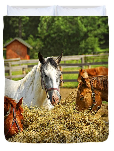 Horses At The Ranch Duvet Cover by Elena Elisseeva