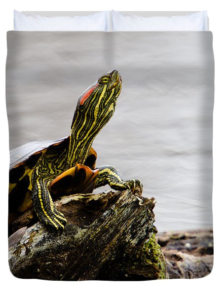 King of the Log Duvet Cover by Jason Smith