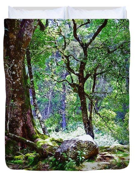 Kingdom Of The Trees. Peradeniya Botanical Garden. Sri Lanka Duvet Cover by Jenny Rainbow