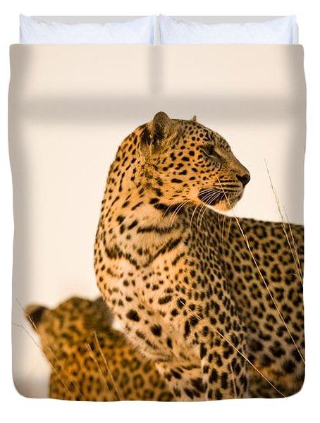 Leopard Panthera Pardus, Arathusa Duvet Cover by Stuart Westmorland