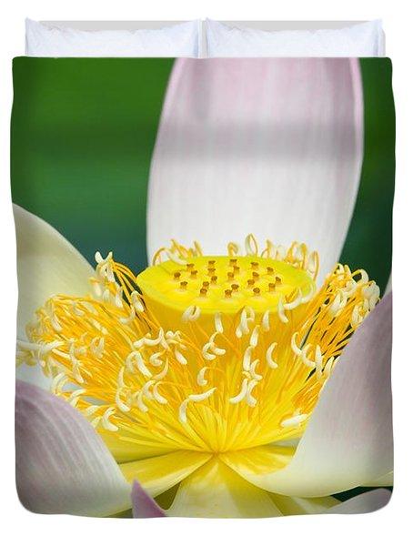 Lotus Up Close Duvet Cover by Sabrina L Ryan