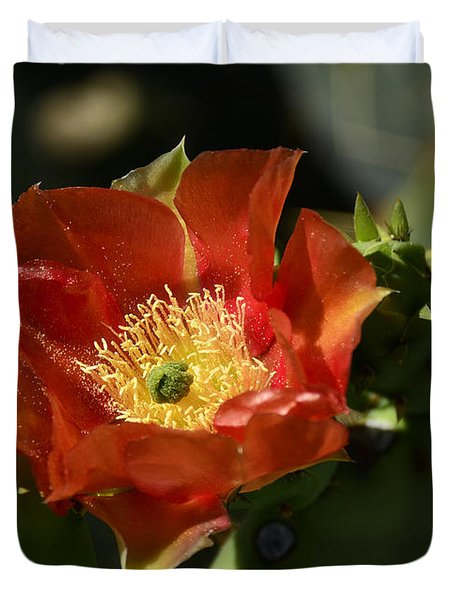 Orange Prickly Pear Blossom  Duvet Cover by Saija  Lehtonen