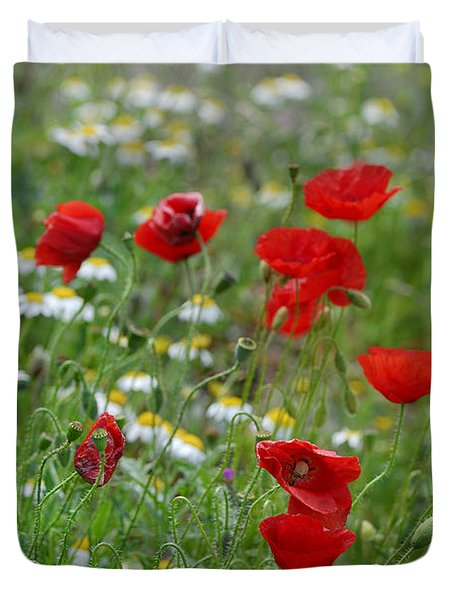 Poppies Duvet Cover by Guido Montanes Castillo
