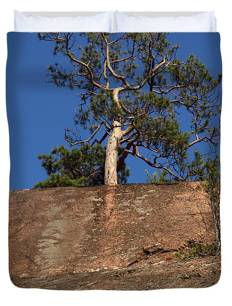 Red Pine Tree Duvet Cover by Ted Kinsman