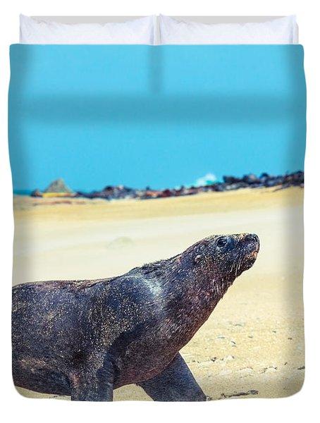 Sea Lion Duvet Cover by MotHaiBaPhoto Prints