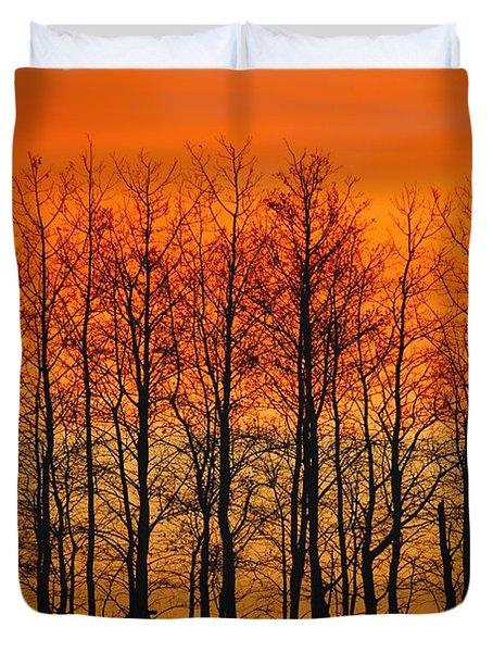 Silhouette Of Trees Against Sunset Duvet Cover by Don Hammond