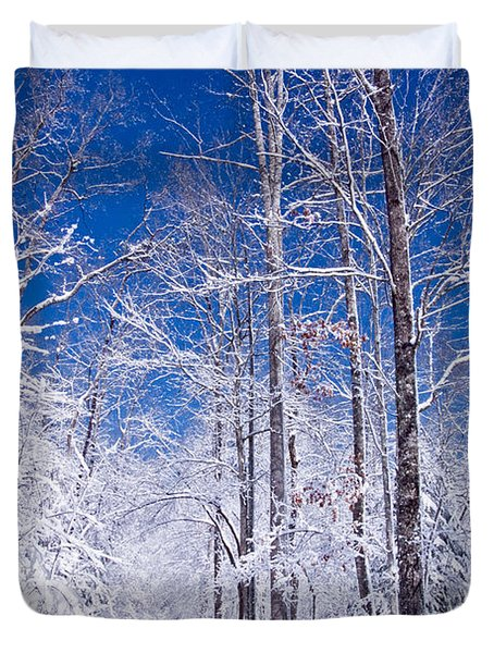 Snowy Path Duvet Cover by Rob Travis