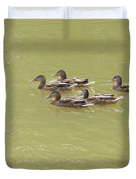 Swimming Ducks Duvet Cover by Corinne Elizabeth Cowherd