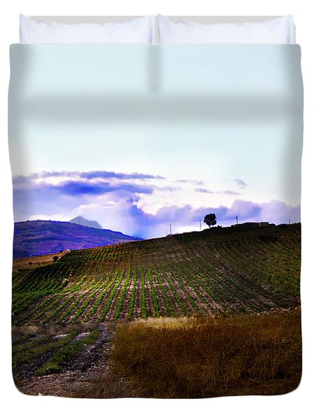 Wine Vineyard In Sicily Duvet Cover by Madeline Ellis