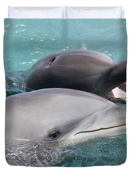 Atlantic Bottlenose Dolphins Duvet Cover by Dave Fleetham
