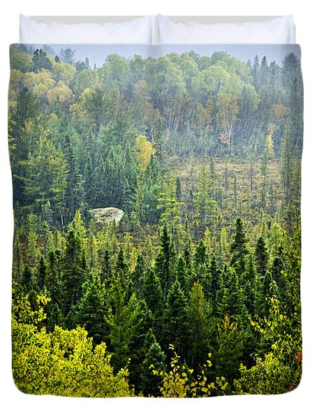 Fall Forest Rain Storm Duvet Cover by Elena Elisseeva