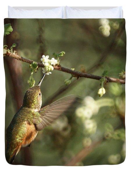 Hummingbird Duvet Cover by Ernie Echols