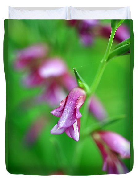 Pink Flowers Of Gladiolus Communis Duvet Cover by Frank Tschakert