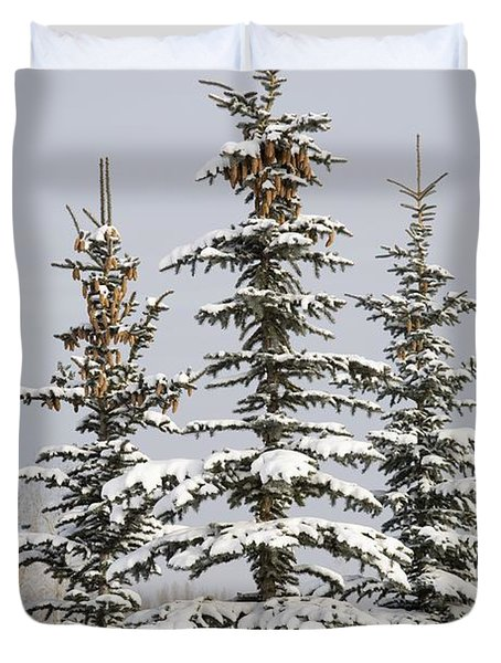 Snow Covered Evergreen Trees Calgary Duvet Cover by Michael Interisano