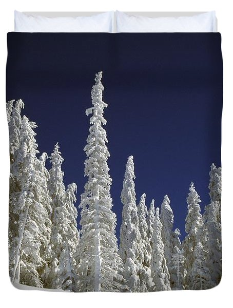 Snow-covered Pine Trees Duvet Cover by Natural Selection Craig Tuttle