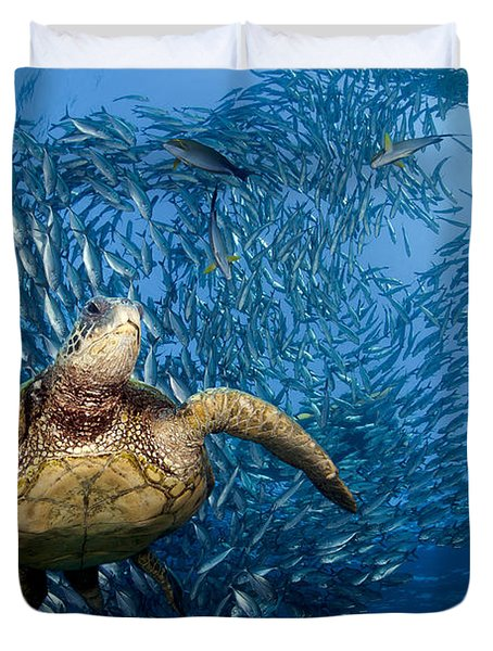 Green Sea Turtle Duvet Cover by Dave Fleetham