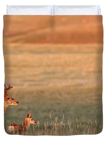 Digitally Enhanced Image With Painterly Duvet Cover by Robert Postma