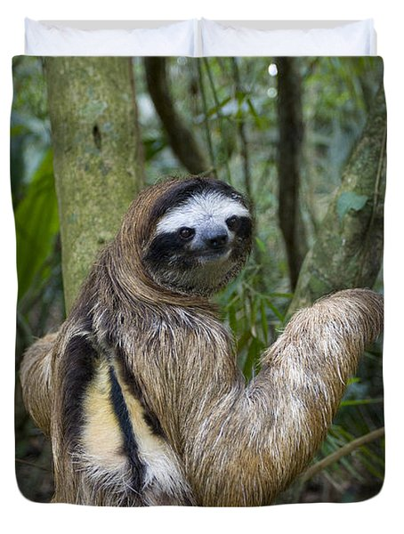 Brown-throated Three-toed Sloth Duvet Cover by Suzi Eszterhas