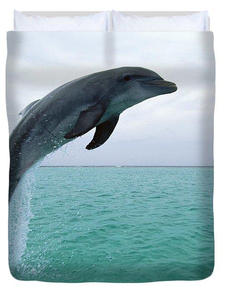 Bottlenose Dolphin Tursiops Truncatus Duvet Cover by Konrad Wothe