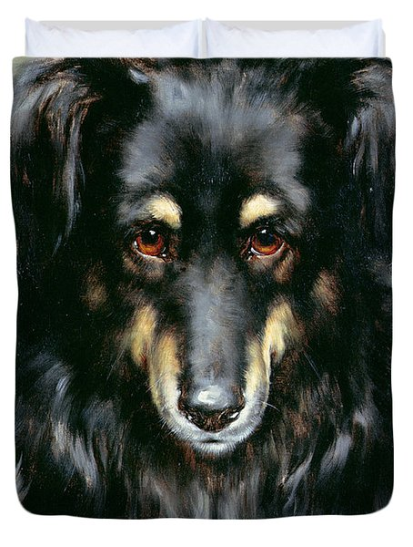 A Black And Tan Collie Duvet Cover by Robert Morley