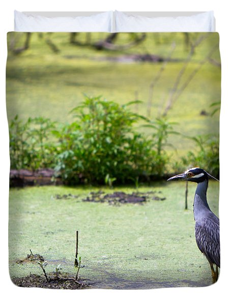 A Blue Bird In A Wetland -yellow-crowned Night Heron  Duvet Cover by Ellie Teramoto