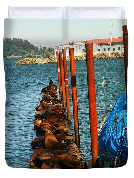 A Dock Of Sea Lions Duvet Cover by Jeff Swan