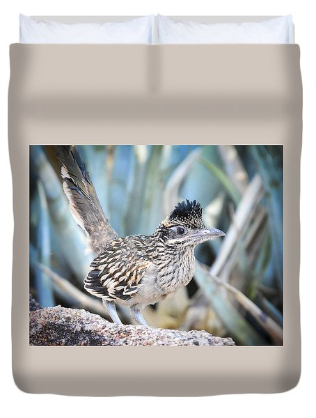 A Juvenile Greater Roadrunner  Duvet Cover by Saija  Lehtonen