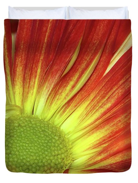 A Red Daisy Duvet Cover by Sabrina L Ryan