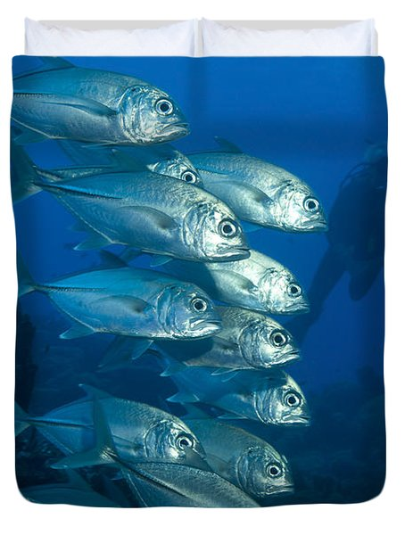 A School Of Bigeye Trevally, Papua New Duvet Cover by Steve Jones