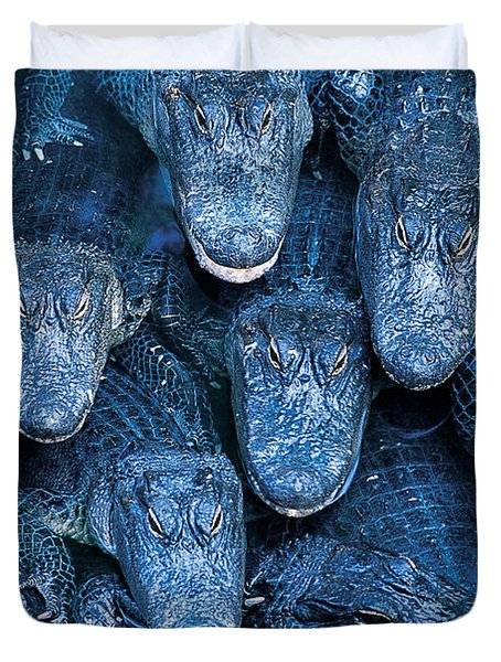 Alligators Duvet Cover by Gary Meszaros and Photo Researchers