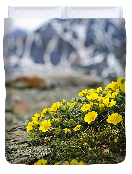 Alpine Meadow  Duvet Cover by Elena Elisseeva
