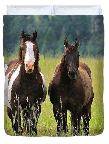 American Paint Stallion And Mare Duvet Cover by Karon Melillo DeVega