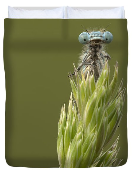Animal Duvet Cover by Andy Astbury
