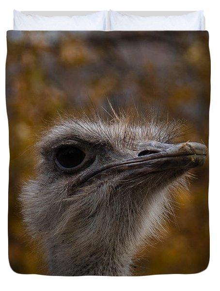 Annoyed Bird Duvet Cover by Trish Tritz