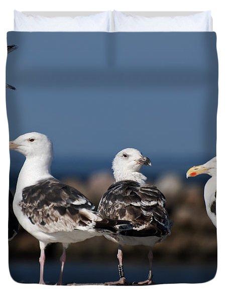 Annual Seagull Congress Duvet Cover by Michael Mogensen